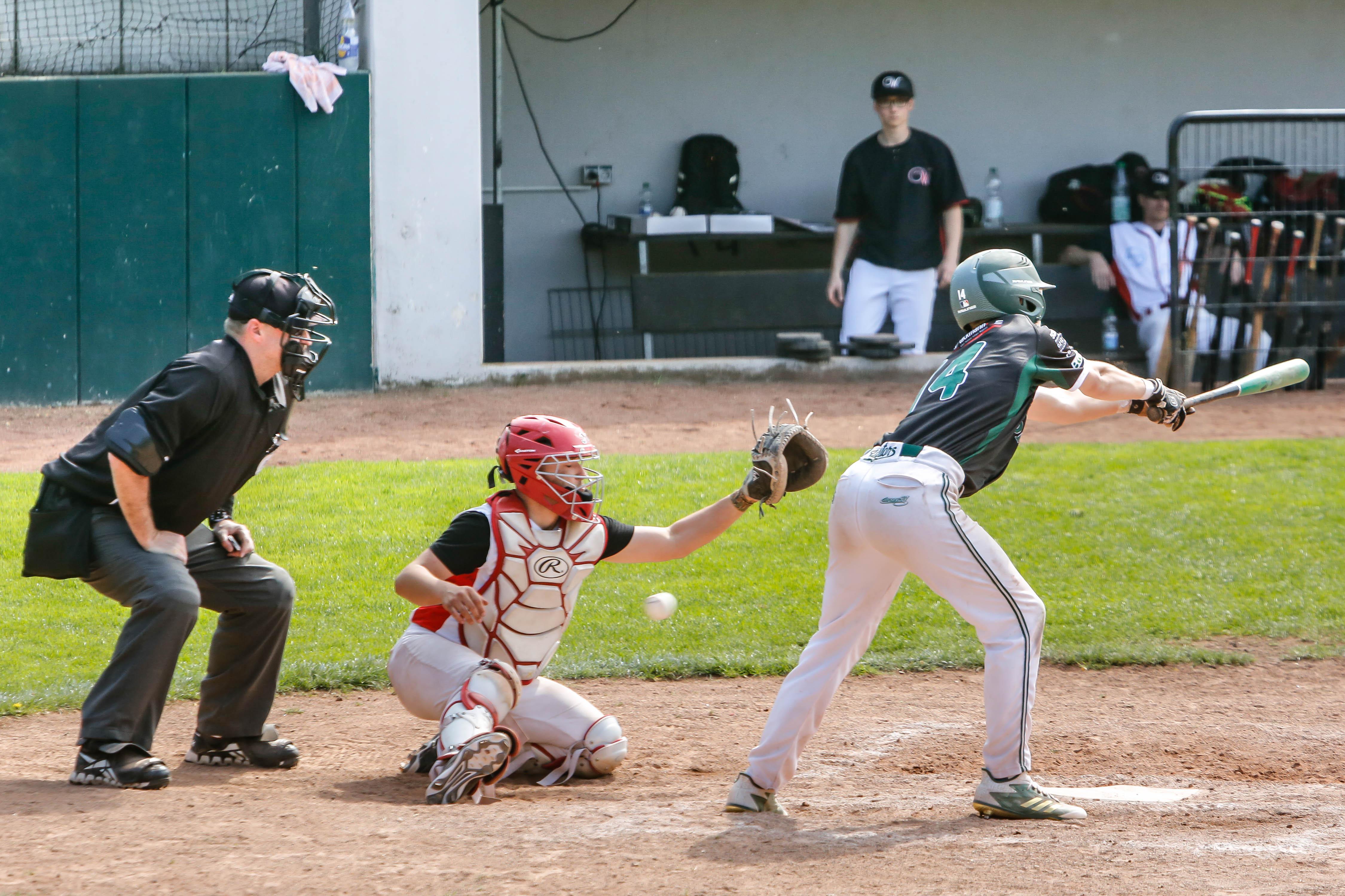 Pressefoto-do Baseball Wanderers